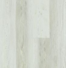 Shaw Floors Resilient Property Solutions Ravenna Plus Century Pine 00181_VE344