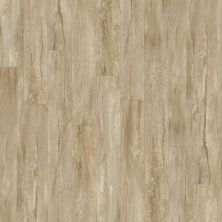 Shaw Floors Vinyl Property Solutions Brava Plus Latte 00209_VE345