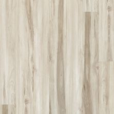 Shaw Floors Vinyl Property Solutions Bargello Plus Mandorla 00118_VE369