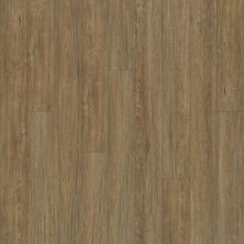 Shaw Floors Vinyl Property Solutions Bargello Plus Marmolada 00782_VE369