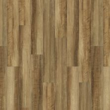 Shaw Floors Vinyl Property Solutions Como Plus Plank Malta 00203_VE370
