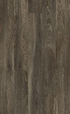 Shaw Floors Vinyl Property Solutions Como Plus Plank Mila 00753_VE370