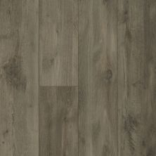 Shaw Floors Resilient Property Solutions Patriot+ Accent Ambassador Oak 05057_VE380