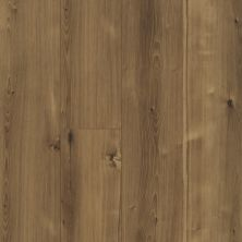 Shaw Floors Resilient Property Solutions Patriot+ Accent Barnwell Hickory 06000_VE380