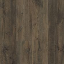 Shaw Floors Resilient Property Solutions Patriot+ Accent Chapman Oak 07067_VE380