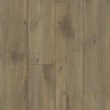 Shaw Floors Resilient Property Solutions Patriot+ Accent Ryman Oak 07068_VE380