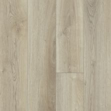 Shaw Floors Resilient Property Solutions Prominence Plus French Oak 00257_VE381