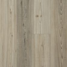 Shaw Floors Resilient Property Solutions Prominence Plus Light Pine 07064_VE381