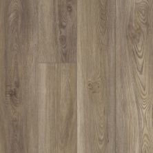 Shaw Floors Resilient Property Solutions Prominence Plus Ash Oak 07065_VE381