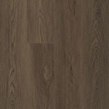 Shaw Floors Resilient Property Solutions Prominence Plus Barrel Oak 07066_VE381