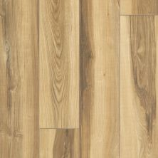 Shaw Floors Resilient Property Solutions Resolute XL HD Plus Butterscotch Walnut 00695_VE387