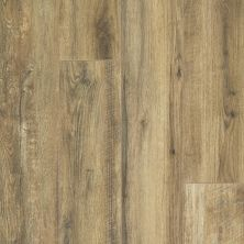 Shaw Floors Resilient Property Solutions Resolute XL HD Plus Hazelnut Oak 07053_VE387