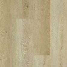 Shaw Floors Resilient Property Solutions Elan Plank River Bend Oak 00296_VE388