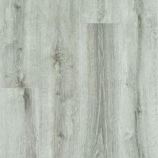 Shaw Floors Resilient Property Solutions Elan Plank Beach Oak 01023_VE388