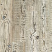 Shaw Floors Resilient Property Solutions Elan Plank Accent Pine 07063_VE388