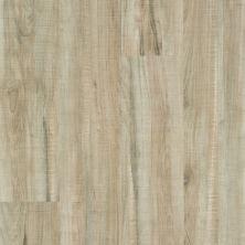 Shaw Floors Resilient Property Solutions Brio Plus 20 Mil Chatter Oak 00295_VE429