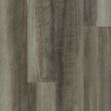 Shaw Floors Resilient Property Solutions Polaris Plus Oyster Oak 00591_VE433