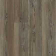 Shaw Floors Resilient Property Solutions Polaris Plus Ripped Pine 07047_VE433
