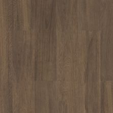 Shaw Floors Resilient Property Solutions Supino Hd+natural Bevel Cordovan 07233_VE441
