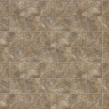 Shaw Floors Resilient Property Solutions Pro 12 Classics Taupe 00738_VG054