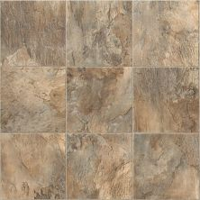 Shaw Floors Resilient Property Solutions Home Front Tile Casper 00500_VG069
