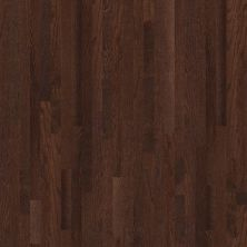 Shaw Floors Nfa Premier Gallery Hardwood Edenwild 2.25 Coffee Bean 00958_VH029
