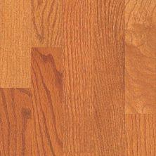 Shaw Floors Nfa Premier Gallery Hardwood Edenwild 3.25 Gunstock 00609_VH030