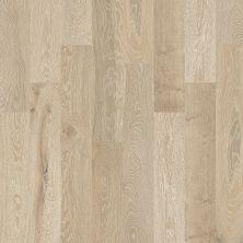 Shaw Floors Nfa Premier Gallery Hardwood Castleton Oak Tower 00524_VH035