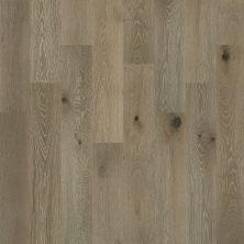 Shaw Floors Nfa Premier Gallery Hardwood Castleton Oak Palisade 05022_VH035