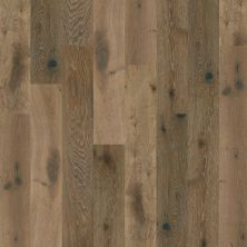 Shaw Floors Nfa Premier Gallery Hardwood Castleton Oak Baroque 05031_VH035