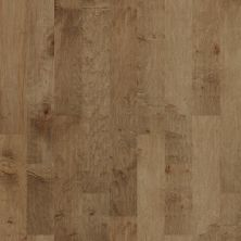 Shaw Floors Nfa Premier Gallery Hardwood Simi Valley Buckskin 02005_VH045