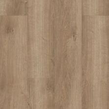 Resilient Residential SMP COREtec Pro Plus Cagua Oak 01003_VH417