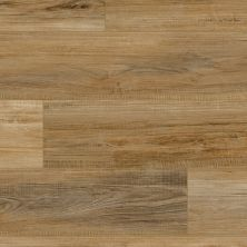 Vinyl Residential COREtec – Pro Plus Enhanced Pl Cameroon Oak 02001_VH492