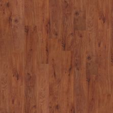 Shaw Floors Nfa HS World Bazar 12 Burlington 00650_VH511