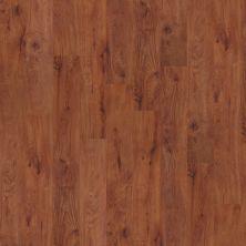 Shaw Floors Nfa HS World Bazar 12 Burlington 00650_VH511