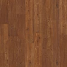 Shaw Floors Nfa HS Barton Plus Universal 00620_VH516