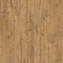 Shaw Floors Nfa Premier Gallery Vinyl Archdale Muslin 00224_VH529