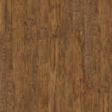 Shaw Floors Nfa Premier Gallery Resilient Archdale Flint 00234_VH529