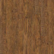 Shaw Floors Nfa Premier Gallery Vinyl Archdale Flint 00234_VH529