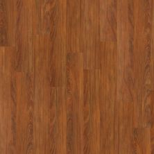 Shaw Floors Nfa Premier Gallery Resilient Archdale Emberglow 00681_VH529