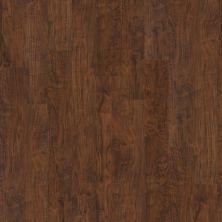 Shaw Floors Nfa Premier Gallery Vinyl Archdale Lodge 00751_VH529