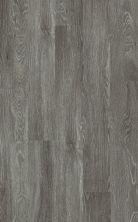 Shaw Floors Nfa HS Dover Plus Pola 00590_VH536