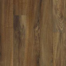 Shaw Floors Nfa HS Dover Verona 00802_VH537