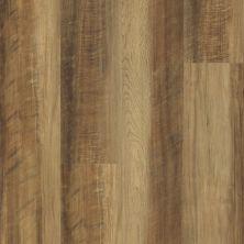 Shaw Floors Nfa HS Ventura Tawny Oak 00203_VH542