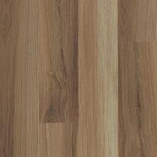 Shaw Floors Nfa HS Ventura Hazel Oak 00762_VH542
