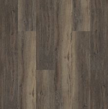 Shaw Floors Nfa HS Beaver Creek Upland Oak 00795_VH544