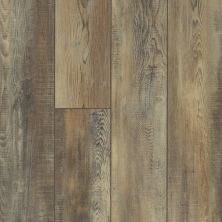 Shaw Floors Resilient Residential Mountainside HD Saggio 00159_VH549