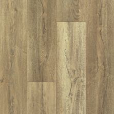 Shaw Floors Resilient Residential Mountainside HD Absaroka 00282_VH549