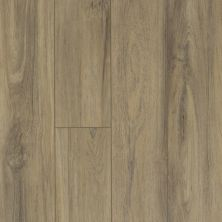Shaw Floors Resilient Residential Mountainside HD Fiano 00587_VH549