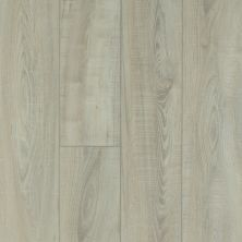 Shaw Floors Resilient Residential Mountainside HD Tufo 00589_VH549